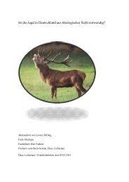 Ist die Jagd in Deutschland aus ökologischer Sicht notwendig ?