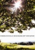 Das Herbstprogramm 2013 des terra magica Verlags - Seite 3