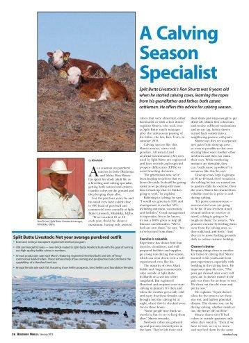 A Calving Season Specialist (January 2013)