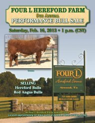 Four L HereFord Farm - Four L Herefords