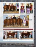 Wyarno, Penny Lane Named American Royal Champions - Page 3