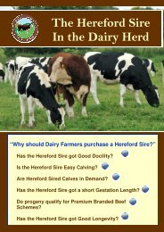 Dairy Flyer 2012 - The Hereford Cattle Society