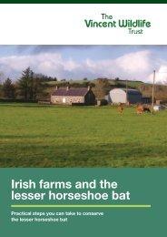Irish farms and the lesser horseshoe bat - The Heritage Council