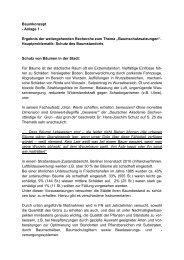 Baumkonzept - Anlage 1 - Ergebnis der ... - Friedrichshafen
