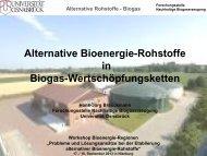 Alternative Bioenergie-Rohstoffe in Biogas-Wertschöpfungsketten