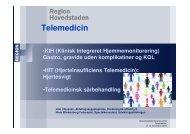 Telemedicin - Herlev Hospital