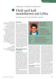 Heiß und kalt modellieren mit LiWa - Wichnalek