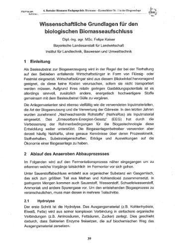 Vortrag 6. Rottaler Biomasse Fachgespräch ... - Biogas-Infoboard