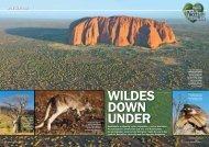 Ein Herz für Tiere Leseprobe - Wildes Down Under