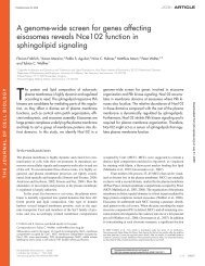 A genome-wide screen for genes affecting eisosomes reveals ...
