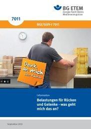 BGI/GUV-I 7011 - Die BG ETEM