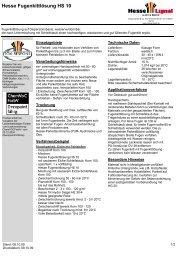 Hesse Fugenkittlösung HS 10 - Hesse Lignal
