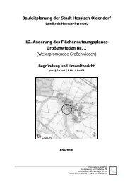 Abschrift Begründung und Umweltbericht (PDF, 3 MB)