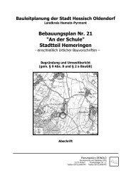 Begründung und Umweltbericht (pdf, 2mb) - Stadt Hessisch Oldendorf
