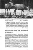 Vereniging Het Edelhert - Page 7