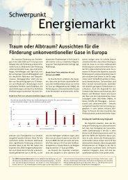 Schwerpunkt Energiemarkt, 170 KB - Zentrum für Europäische ...