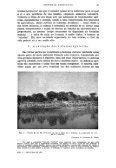 REVISTA BRASILEIRA DE GEOGRAFIA - Biblioteca do IBGE - Page 4
