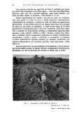 REVISTA BRASILEIRA DE GEOGRAFIA - Biblioteca do IBGE - Page 7