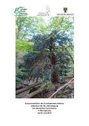 G04 - Deutscher Forstverein
