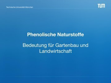 Phenolische Naturstoffe - Technische Universität München