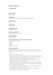 HauPtfacHModul 3 3. Studienjahr Modulnummer BM-HF3-2.4g ...