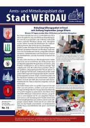 Nr. 15 - Stadt Werdau