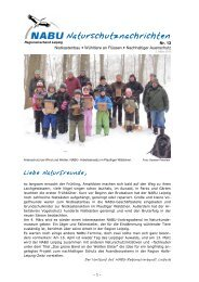 NABU-Naturschutznachrichten - Nr. 13 - alt.nabu-sachsen.de