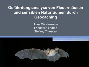 Geocaching vs. Fledermaus 1