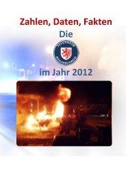 Jahresstatistik 2012 - Stadt Braunschweig