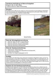Steckbriefe | PDF 11,2 MB - GfG