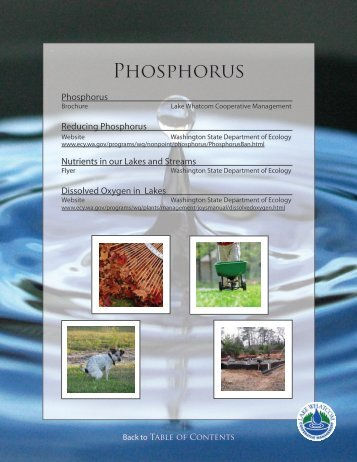 Phosphorus (PDF) - City of Bellingham