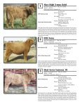 AHCA National Sale - American Highland Cattle Association - Page 3