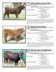 AHCA National Sale - American Highland Cattle Association - Page 5
