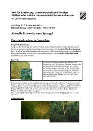 Hinweis vom 04. Juli 2013 - Amt für Ernährung, Landwirtschaft und ...