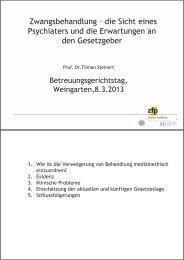 Präsentation von Prof. Dr. Tilman Steinert