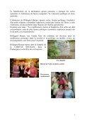 Hildegard Burjan - Gazette - Page 5