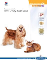 lower urinary tract disease - HillsVet