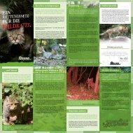20.000 Kilometer … und Schutz Rettungsnetz Wildkatze Überleben ...