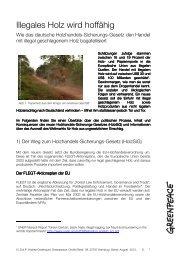 FS Illegaler Holzhandel HolzSiG - Greenpeace