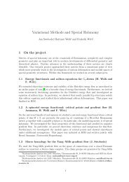Variational Methods and Special Holonomy - HIM