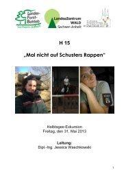H15 - Deutscher Forstverein