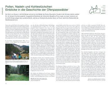 Pollen, Nadeln und Kohlestückchen Einblicke in die Geschichte der ...