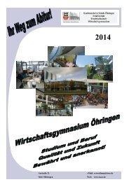 Informationen zum Wirtschaftsgymnasium 2014 - Kaufmännische ...