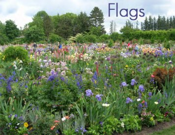 Flags, Issue #5 April, 2012 - Historic Iris Preservation Society