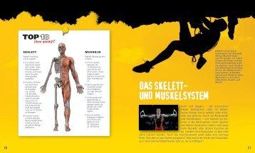 """PDF """"Das Skelett- und Muskelsystem"""""""