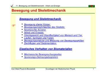 Bewegung und Skelettmechanik - Institut für Medizinische Physik ...