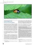 Download - Verband Christlicher Pfadfinderinnen und Pfadfinder - Seite 6