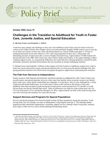 the transition of youth into adulthood essay Supporting youth in transition to adulthood: lessons learned from child  welfare  paper focuses on two of those systems: child welfare and.