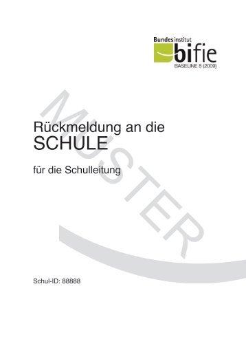 Bildungsstandards Baseline Muster Schulbericht - Bifie