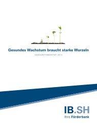 PDF für den Download - Investitionsbank Schleswig-Holstein